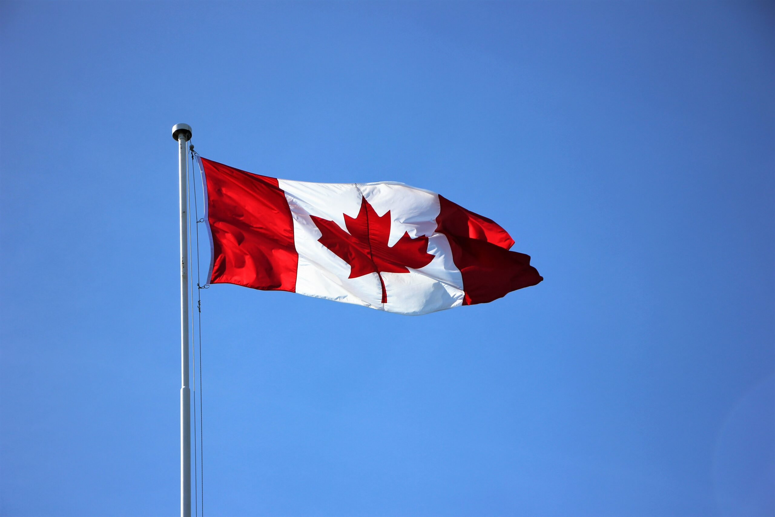Updates to IRCC Translation Requirements: Who Can (Or Can't) Translate Your Documents for Immigration